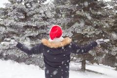 Hintere Ansicht des Touristen mit den Armen oben im Wald am Schneetag lizenzfreie stockfotografie