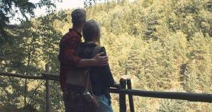 Hintere Ansicht des Umarmens von den Paaren, die auf einem Hügel in einem Wald stehen stock video