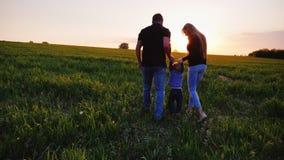 Hintere Ansicht: Ein glückliches Paar von Eltern mit einem kleinen Sohn gehen über das Feld in Richtung zum Sonnenuntergang Glück stock footage
