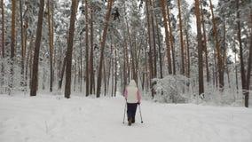 Hintere Ansicht einer älteren Frau, die an dem Nordic teilnimmt, der im Wald auf einen schneebedeckten Weg geht Die moderne Form  stock video