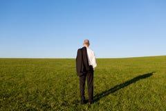 Hintere Ansicht reifen Geschäftsmann-Standing On Grassy-Feldes Stockbild