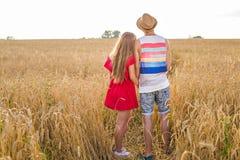 Hintere Ansicht von den verliebten Paaren, die auf dem Gebiet gehen Stockfotografie