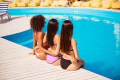 Hintere Ansicht von drei heißen dünnen Brunettedamen mit gesundem und n stockbilder