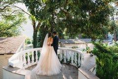 Hintere Ansicht von ein paar Jungvermählten, die im Park umarmen Die Braut in einem schwarzen Anzug und Braut in einer schönen we lizenzfreies stockfoto