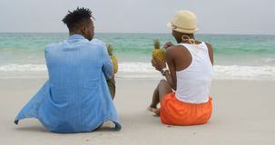 Hintere Ansicht von trinkenden Ananassäften der Afroamerikanerpaare auf dem Strand 4k stock video footage