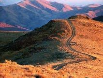Hintere Straße der Wüste Lizenzfreies Stockfoto
