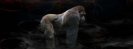 Hinterer Gorilla des Silbers in der Mitte Lizenzfreies Stockbild