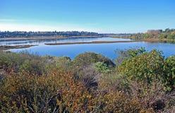 Hinteres Schacht-Sumpfgebiet/-mündung an Newport-Strand Kalifornien. Lizenzfreie Stockfotos