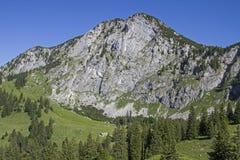 Hinteres Scharnitzalm in Benediktenwand-Bereich Lizenzfreie Stockbilder