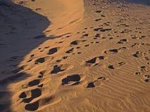 Hintergrund-Abbildung der Wüste Lizenzfreies Stockfoto