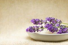 Hintergrund - BadekurortBadesalz und Lavendel Lizenzfreie Stockbilder