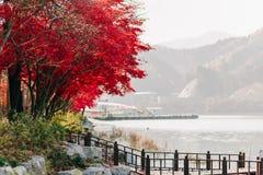 Hintergrund-Beschaffenheit des Gelbs lässt Autumn Leaf Background Stockfotografie