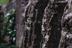 Hintergrund, Beschaffenheit des Natursteins Stockbild