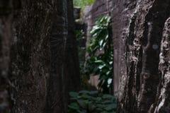 Hintergrund, Beschaffenheit des Natursteins Lizenzfreies Stockbild