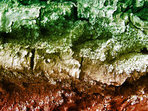 Hintergrund der Baumrinde in den Herbstfarben stockfoto