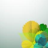 Hintergrund der Blätter Stockbilder