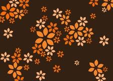 Hintergrund der Blume Lizenzfreie Stockbilder