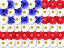 Hintergrund der Blumen als USA-Markierungsfahne Stockbilder
