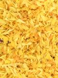 Hintergrund der Blumenblätter Ringelblumenblume lizenzfreie stockbilder