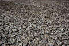 Hintergrund der Dürre Stockfotografie