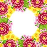 Hintergrund der frischen Blume Stockfotografie