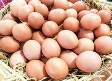 Hintergrund der frischen Eier stockbilder