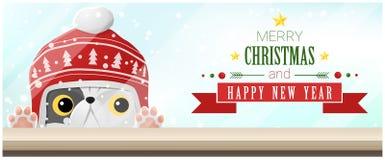 Hintergrund der frohen Weihnachten und des guten Rutsch ins Neue Jahr mit der Katze, die leere Tischplatte betrachtet Stockbild