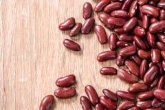 Hintergrund der Gartenbohne, rote Bohnen Lizenzfreies Stockbild