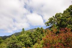 Hintergrund der Gebirgslandschaft und des blauen Himmels Lizenzfreie Stockbilder