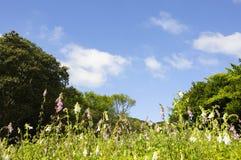 Hintergrund der Gebirgslandschaft und des blauen Himmels Stockfoto