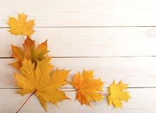 Hintergrund der gelben Herbstblätter Stockfoto