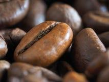 Hintergrund der Kaffeebohnen Stockbilder
