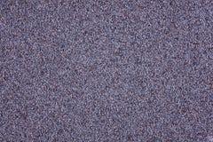 Hintergrund der Mohnblume Stockfotos