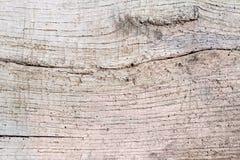 Hintergrund der Oberfläche der alten dunklen hölzernen Planke Lizenzfreie Stockfotografie