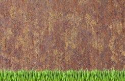 Hintergrund der rostigen Wand und des grünen Grases lizenzfreies stockfoto