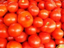 Hintergrund der roten reifen Tomaten Stockbild