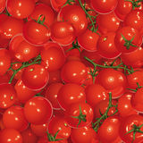 Hintergrund der Tomaten Stockbild