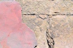 Hintergrund der schmutzigen Backsteinmauer der alten Weinlese mit Schalengips, Beschaffenheit Lizenzfreie Stockfotografie