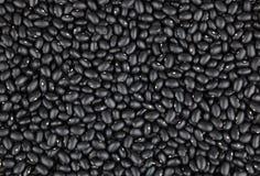 Hintergrund der schwarzen Bohnen Stockfotografie
