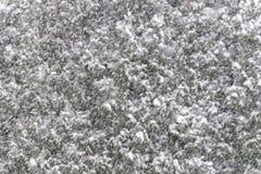 Hintergrund der schweren Schneefälle mit den Flocken, die unten vor s fallen Stockfotos