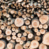 Hintergrund der trockenen gehackten Brennholzprotokolle Lizenzfreie Stockbilder
