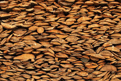 Hintergrund der trockenen gehackten Brennholzprotokolle vorangekommen Stockfoto