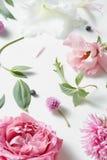 Hintergrund der verschiedenen Blumen Lizenzfreies Stockbild