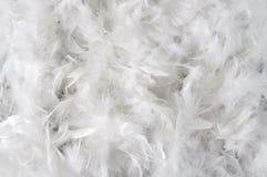 Hintergrund der weißen Federn stockfotos