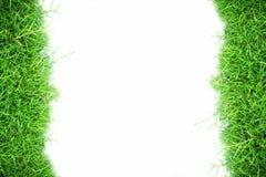 Hintergrund der weißen Wand und des grünen Grases Lizenzfreie Stockfotos