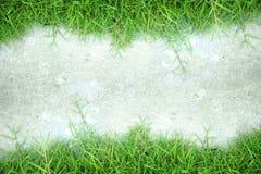 Hintergrund der weißen Wand und des grünen Grases Stockfotografie