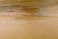Hintergrund des alten Baumrindelichtes Stockbilder