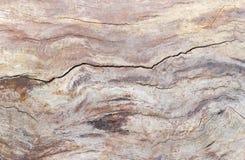 Hintergrund des alten Stammes des verwelkten Baums verdunkelte sich mit Zeit Stockbild