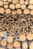 Hintergrund des Birkenbrennholzes gestapelt Stockbild