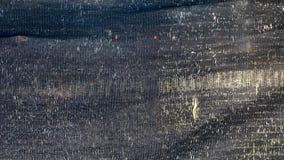 Birkenholz Farbe landwirtschaftlicher hintergrund trockenes birkenholz stockfoto